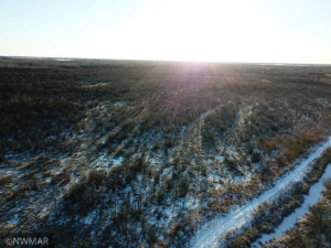 TBD 440th Avenue, Wannaska, MN 56761