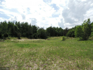 TBD County 39, Laporte, MN 56461