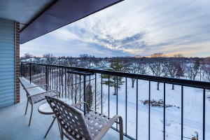 Check out downtown Mpls & gorgeous sunsets from the western facing double balcony