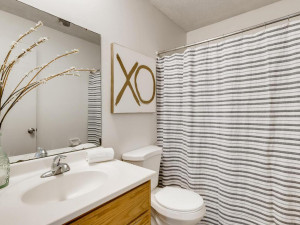 1356 Circle Terrace Boulevard-006-009-Primary Bathroom-MLS_Size