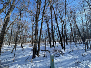 TBD Williams Road SE, Cass Lake, MN 56633