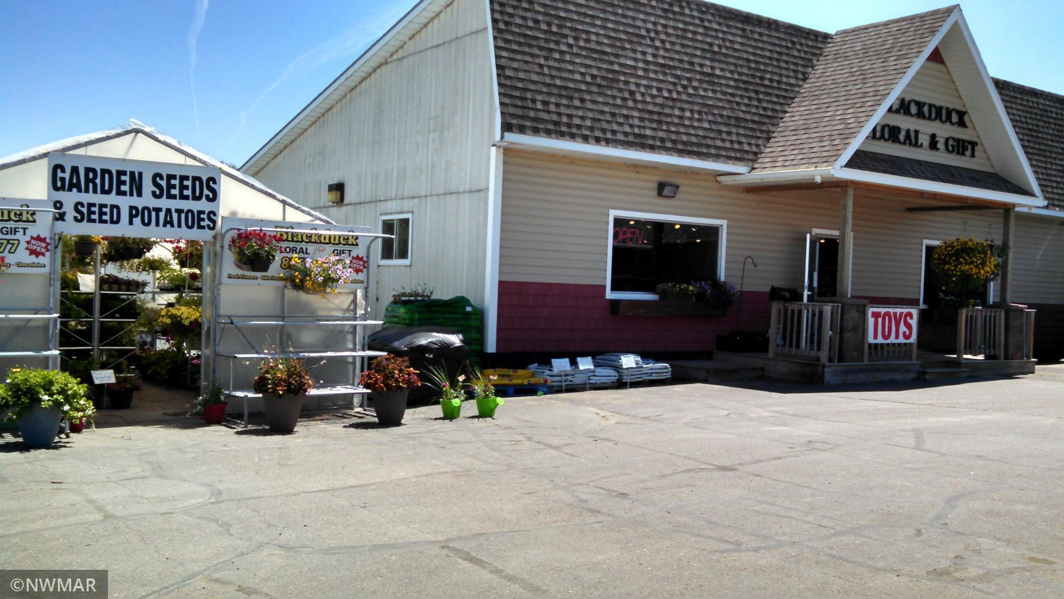264 Frontage Road, Blackduck, MN 56630