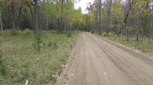 Lot 4 Blk Falling Leaf Trail, Park Rapids, MN 56470