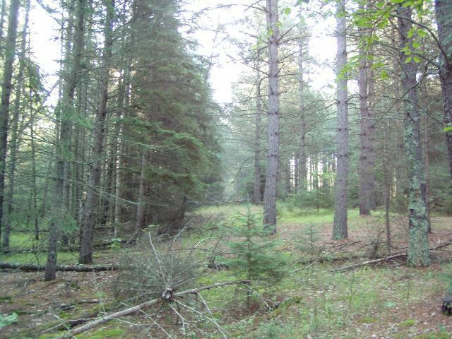 Lot3 Blk 1 Falling Leaf Trail, Park Rapids, MN 56470