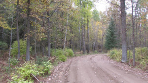Lot 9 Blk Falliong Leaf Trail, Park Rapids, MN 56470