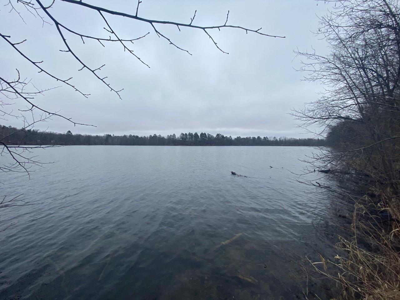 TBD6 Early Bird Drive, Park Rapids, MN 56470