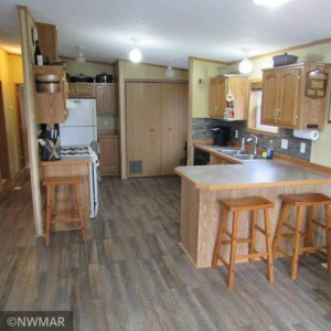 1036 Winter Drive NW, Baudette, MN 56623
