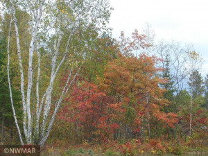 5747 Island View Drive NE, Bemidji, MN 56601
