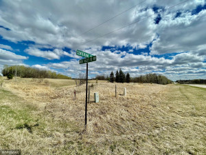 TBD Centerline Road NW, Shevlin, MN 56676