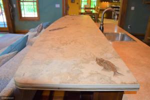 Livingroom Wet Bar Rare Fossil Counter Top