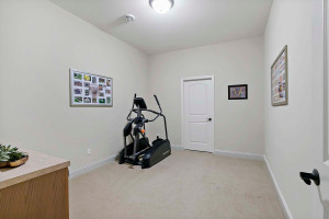 Flex Room - Excercise, Office - the ceiling light is wired for a ceiling fan addition