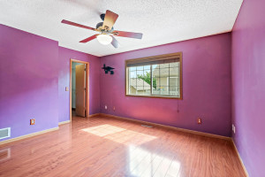 1013 Locust Street, Farmington, MN 55024