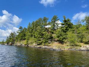 2450 Keyes Island, International Falls, MN 56649