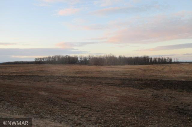 TBD County Road 2 NW, Williams, MN 56686