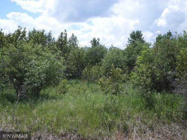 TBD 330th Street NW, Middle River, MN 56737