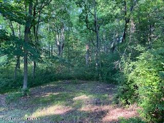 Xxx Ferncliff Road, Clitherall, MN 56524