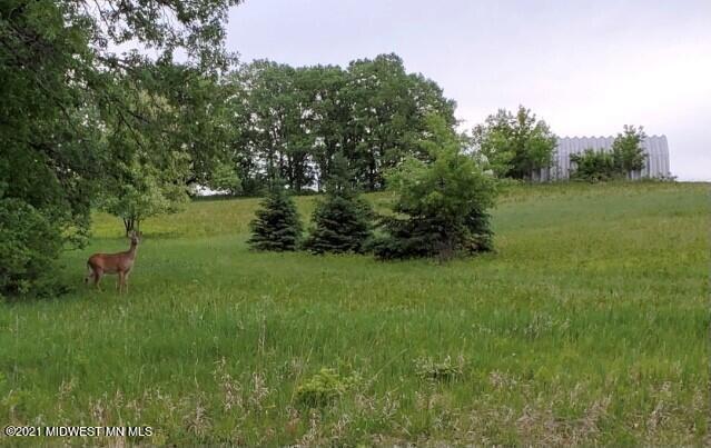 28740 Sherman Lake Road, Ottertail, MN 56571