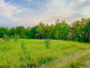 TBD 38TH ST NW, Williams, MN 56686