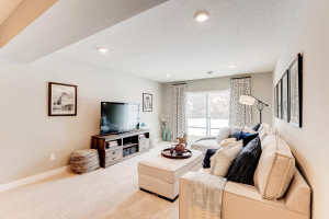 Another view of the lower level family room. Actual home is a lookout lower level.