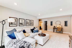 Lower level family room gives you tons of living options.