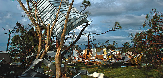 Impact: Insurance