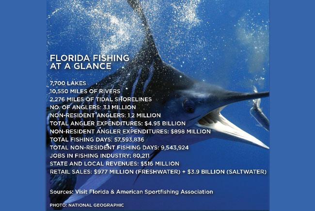Florida Fishing at a glance