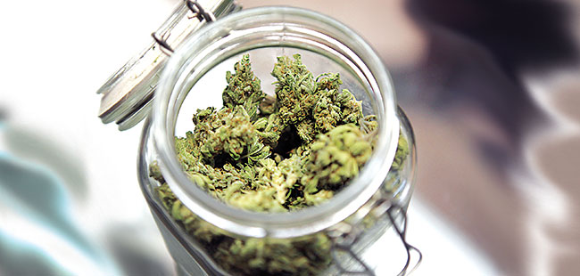 Medical marijuana: Smoke, no mirrors