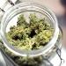 Medical marijuana: Smoke, no mirrors