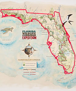 Florida Wildlife Corridor Expedition