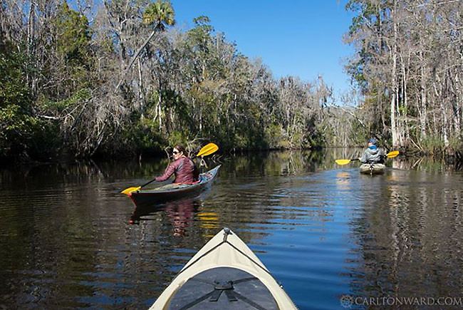 Florida Wildlife Corridor Expedition 01302015