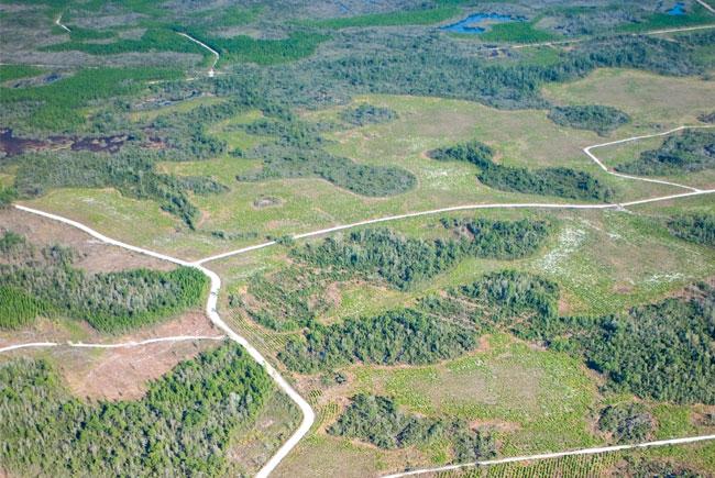 Farewell to Florida's 'Development of Regional Impact' (DRI) Law