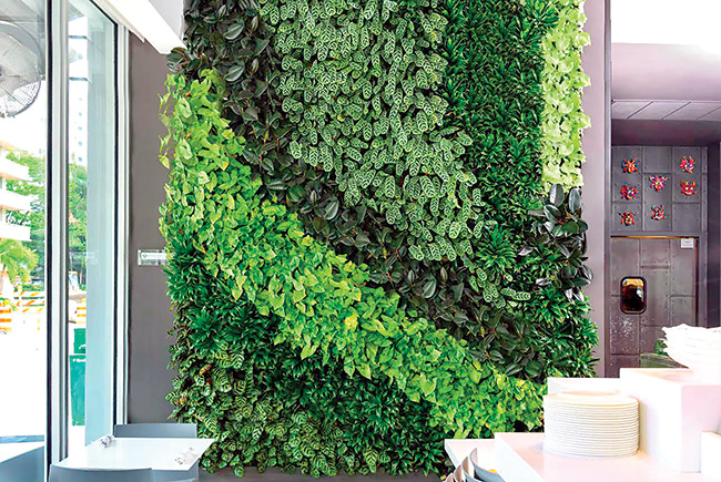 International links: Andromeda sees green in its vertical gardens