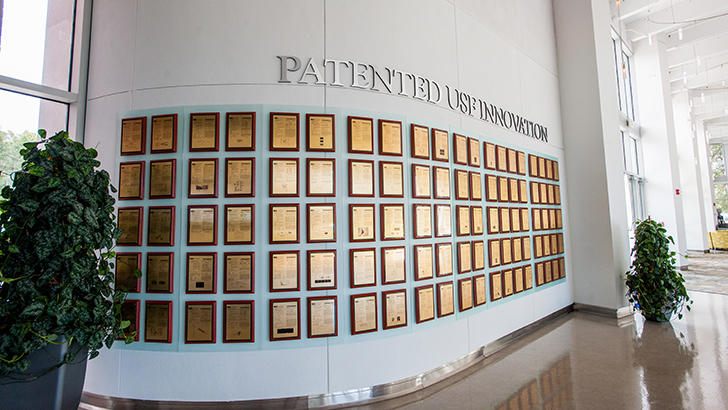 USF tops Florida universities in number of patents generated