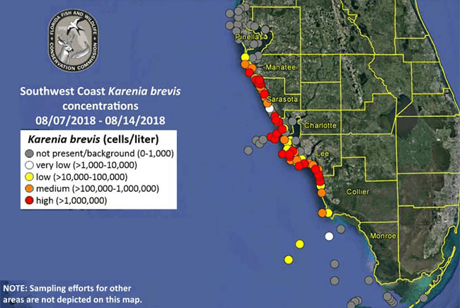 Gov. Scott Issues Emergency Order for Red Tide   Florida Trend