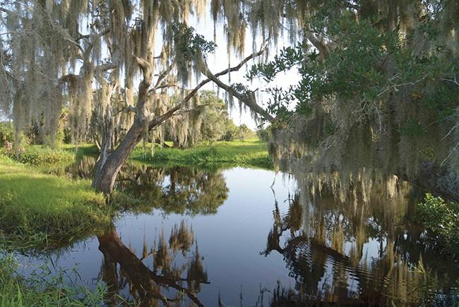 Florida Conservation Land