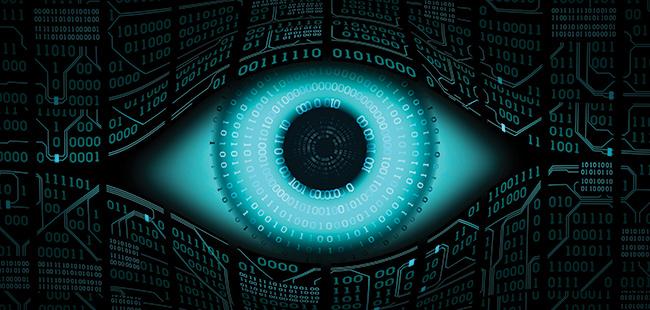 Florida Atlantic University researchers analyze cyber-crime data