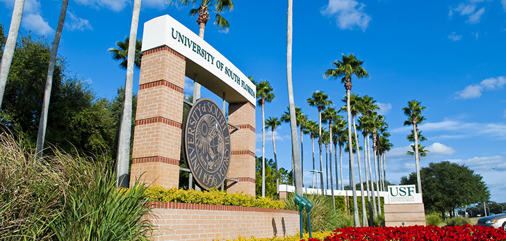 USF's presidential search is heating up