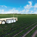 Florida's Wish Farms and automation innovation