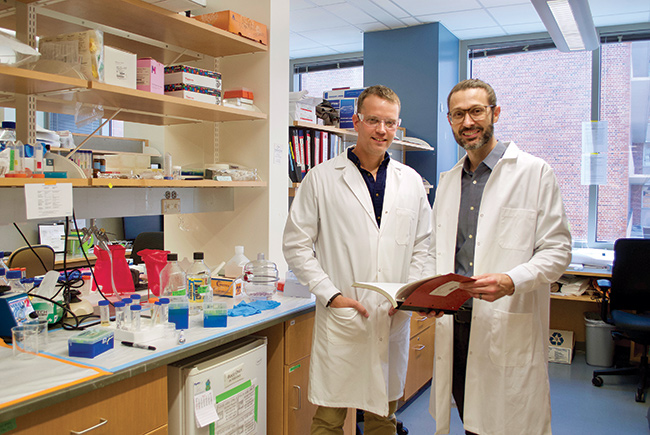 UF researchers discover osteoarthritis relief for patients