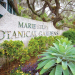 Marie Selby Botanical Gardens $92-million expansion plan scrapped