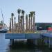 Southwest Florida - Red tide, higher ed, transportation