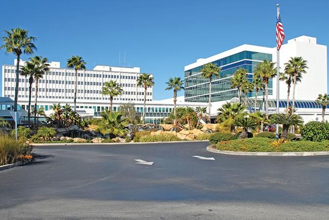 Leading in Patient-Focused Health Care