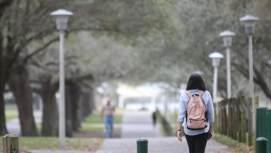 Florida's state universities to move classes online, citing coronavirus