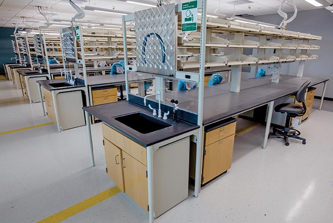 USF Medical School