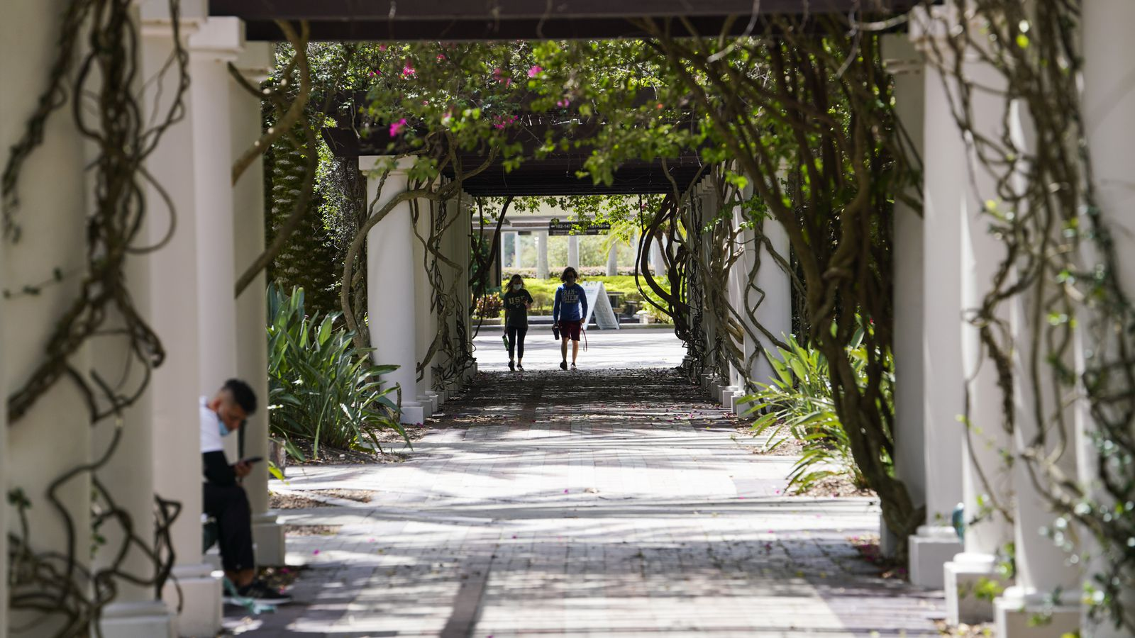 Should Florida raise tuition at state universities? It's being discussed.