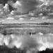 Politics of the Everglades