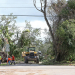 Coral Gables initiates talks about burying power lines