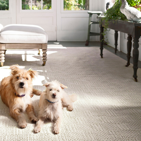 Dash & Albert Rug Company - Bonnie Grey Woven Cotton Rug - RDA408-58