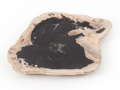 Phillips Collection - Petrified Wood Plate - ID66471