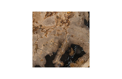 Phillips Collection - Petrified Wood Stool - ID74007